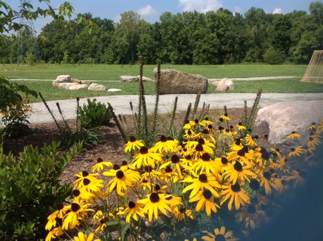 Boulders on a green field and yellow sunflowers in the front